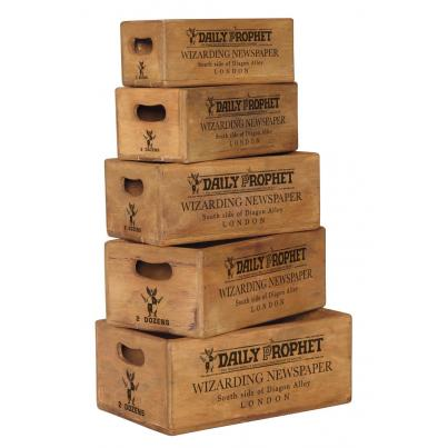 Set of 5 Nesting Boxes - H.P Daily Prophet